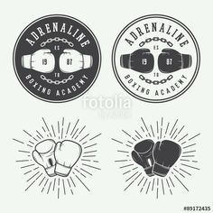 Vetor: Boxing and martial arts logo badges and labels in vintage style.