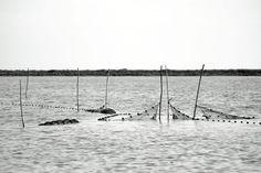 Paysages - Association de Photographes
