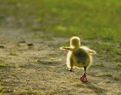 """""""Lo que crees determina TÚ realidad"""" CLICK http://jaqmpublishing.blogspot.com/2015/01/lo-que-crees-determina-tu-realidad.html"""