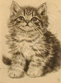 Meta Pluckebaum. Born in Germany in 1876. Pencil etching of kitten.
