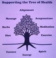 In oriental medicine, the fruits of good health require a tree with strong roots and branches. Traditionally, essence (jing), energy (chi) and spirit (shen) form the roots, and its main branches are diet, exercise, meditation, herbal medicine, acupuncture, massage and alignment with the environment, nature and the cosmos.