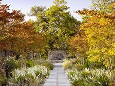 KeepStringLights: Autumn's Beauty in the garden