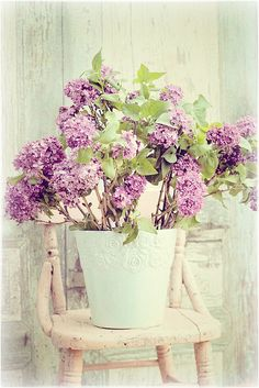 lilacs by lucia and mapp, via Flickr