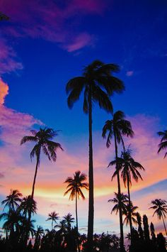 Our sky and coconut tress by ~grade1 on deviantART