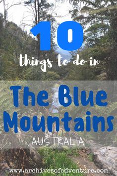 If you're looking for a quick getaway from Sydney, the Blue Mountains are where you'll want to head. Here are 10 things to do in the Blue Mountains.