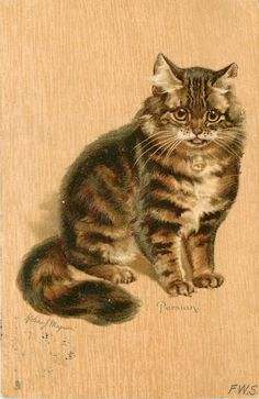PERSIAN (1904) Helena Maguire