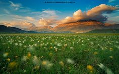 Land of whispering wind by Dreamerlandscape.com , via 500px