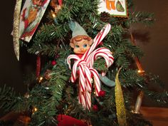 Stealing all the candy canes on the tree!