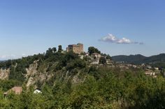 Prunetto's Castle, Italy Seattle Skyline, Castles, Inspiration, Travel, Italy, Pet Dogs, Biblical Inspiration, Viajes, Chateaus