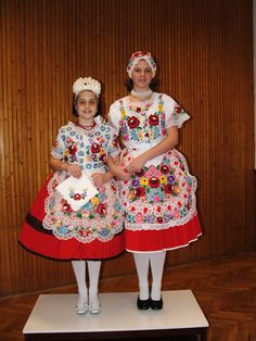 Bildresultat för A beautiful Kalocsa outfit Folk Costume, Costumes, Hungarian Embroidery, Popular, Tutu, Harajuku, Burgundy, Gowns, Halloween