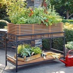 Hochbeet bauen und bepflanzen: So geht's You don't have to do without a raised bed on the balcony or Raised Garden Beds, Raised Beds, Garden Furniture, Outdoor Furniture Sets, Outdoor Decor, Planter Boxes, Planters, Hydrangea Seeds, Greenhouse Plants