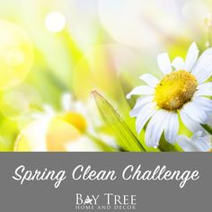 Spring Clean Challenge {Free Printable} - Bay Tree Home & Decor First Day Of Spring, Spring Cleaning, Something To Do, Free Printables, Challenges, Plants, Inspiration, Home Decor, Biblical Inspiration