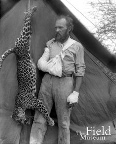 Carl Akeley posed with the leopard he killed with his bare hands after it attacked him, 1896.