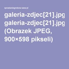 galeria-zdjec[21].jpg (Obrazek JPEG, 900×598pikseli)