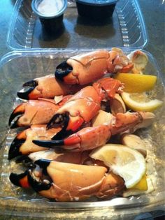 Stone crab, best of you get them from the Keys