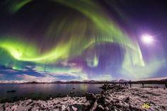 Auroras boreales y la Luna desde Abisko, Suecia