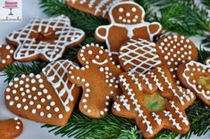 słodki blog Gingerbread Cookies, Desserts, Blog, Gingerbread Cupcakes, Tailgate Desserts, Deserts, Postres, Blogging, Dessert