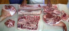 Hog broken down for the eight main salumi preps, from the book: http://www.amazon.com/exec/obidos/ASIN/0393068595/ruhlmancom