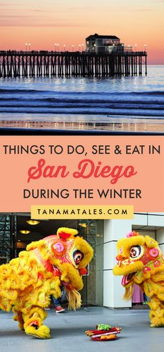 Things to do in San Diego during the winter season | California | San Diego Snow | San Diego Museums | San Diego Hiking | San Diego Outdoors | San Diego Beaches | San Diego Cafes and Coffee | San Diego Hot Chocolate | San Diego Ice Skating | San Diego Food | San Diego Food | San Diego Tamales | Winter La Jolla | Winter Pacific Beach | Winter Ocean Beach | Winter La Jolla | San Diego Itinerary | Southern California Winter | USA Winter Getaway | San Diego Farmers Markets | San Diego Winter…