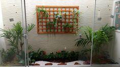 Uma idéia para jardim de inverno!! Projeto Marcelo Gizotti.