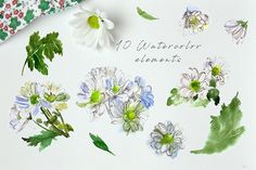 Garden Flowers - Watercolor elements by Graphic Republic on @creativemarket
