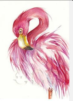 Flamingo watercolor, ive always been sort of attracted to these animals ! They are just so gorgeous! Flamingo Painting, Flamingo Art, Pink Flamingos, Flamingo Drawings, Flamingo Tattoo, Animal Paintings, Animal Drawings, Art Drawings, Drawing Animals
