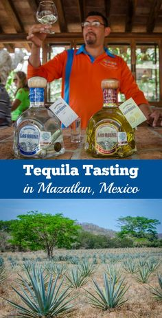 Sampling award-winning tequilas at Los Osuna Distillery in Mazatlan, Mexico.
