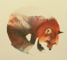 """euphoricspirit: """"vulpes-latrans-lupus: """"Spirits Of The Forests, Guardian's Of The Deep Woods: Art by Andreas Lie """" Beautiful. """""""