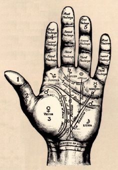 I love palm reading so very much. Although sometimes it makes me nervous that my lifelines on my hands are different lengths...one short, one long.