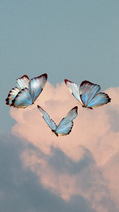 Blue Butterfly Wallpaper, Butterfly Background, Summer Wallpaper, Aesthetic Desktop Wallpaper, Iphone Background Wallpaper, Blue Wallpapers, Pretty Wallpapers, Images Esthétiques, Blue Aesthetic