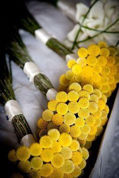 Yellow flowers tied up in bunches and satin wraps.