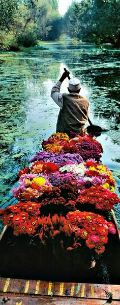 Traveling - flowers delivery in Kashmir ~ photo by Steve McCurry