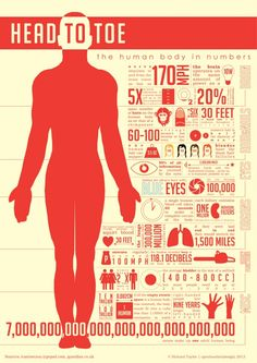 Human body (Head to toe)--great for students to analyze at the beginning of the human body unit! Human Body Unit, Human Body Systems, Health Facts, Health Quotes, Teaching Science, Life Science, Middle School Science, Anatomy And Physiology, Living At Home
