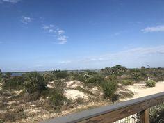 New Smyrna Beach Florida, Florida Beaches, Water, Outdoor, Water Water, Outdoors, Outdoor Games, The Great Outdoors, Aqua