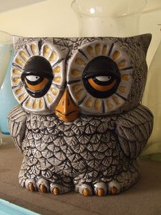 Stoned looking owl