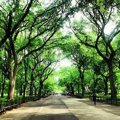 Central Park, New York, New York City