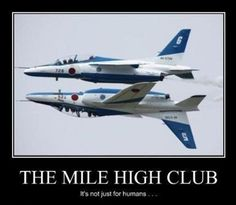 The mile high club. It's not just for humans. Picture Quotes.