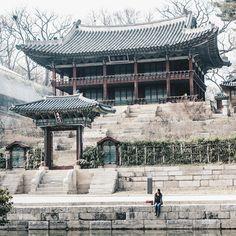Secret Garden!  #wwim11seoul #wwim11 #Korea #korean #SouthKorea #southkorean #Seoul #seoul_korea #ig_korea #seoulkorea #vsco #vscocam #asia #travel #seoulsnap #한국 #한국인 #여행#짱 #대박