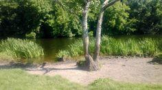 A nice #picnic place along the #boyneriver. #sunny #slane #Ireland #boynevalley #discoverireland #visitslane