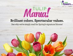1800flowers promo codes coupons