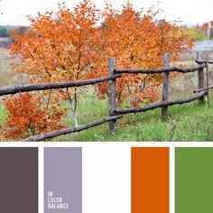 Alex Romanuke, anaranjado fuerte, anaranjado y marrón, anaranjado y verde, blanco y verde, color marrón grisáceo, combinación de colores claros para decorar un piso, elección del color, marrón grisáceo, matices del marrón grisáceo, paleta de colores de otoño, verde fuerte, verde y