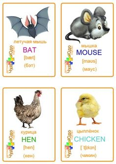 Russian Language Learning, Learning English For Kids, Learn Russian, Learn English, English Grammar, English Language, Animals For Kids, Baby Animals, English Reading