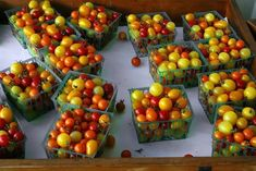 7 Hacks Used By Prize Winning Gardeners To Double Their Tomato Harvest Growing Tomatoes In Containers, Growing Veggies, Grow Tomatoes, Dried Tomatoes, Home Vegetable Garden, Tomato Garden, Veggie Gardens, Tomato Farming, Tomato Fertilizer