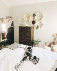 Our top sheet snaps to the duvet cover, keeping your sheets intact during those tossy-turny nights. Making your bed has never been easier! Earthy Bedroom, Modern Bedroom, Boho Teen Bedroom, Boho Chic Bedroom, Bedroom Rustic, Room Ideas Bedroom, Home Decor Bedroom, Bedroom Designs, Bedroom Bed