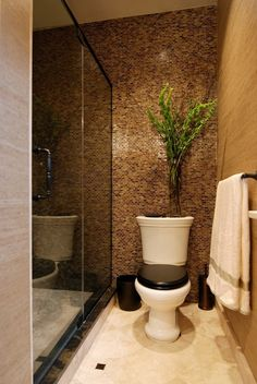 Toilet Beside Shower With Tiled Wall