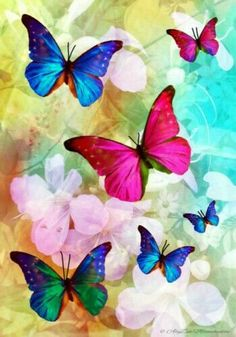 Beautiful butterflies for our beautiful Marjie! Butterfly Painting, Butterfly Wallpaper, Butterfly Fairy, Blue Butterfly, Cellphone Wallpaper, Iphone Wallpaper, Cute Wallpapers, Wallpaper Backgrounds, Art Papillon