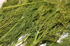 Dill soothes upset stomach, prevents diarrhea, and reduces the amount of gas produced in the intestines Upset Stomach Remedy, Stomach Remedies, Herbal Remedies, Home Remedies, Natural Remedies, Cleaners Homemade, Aquaponics, Kraut, Natural Healing