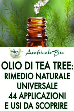 Just Creme, Tee Tree, Tea Tree Oil, Hemp Oil, American Indians, Aromatherapy, Aloe, Natural Remedies, The Cure