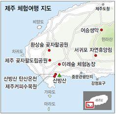 추운데 제주도?…추워도 제주도! : 매거진esc : 특화섹션 : 뉴스 : 한겨레 Jeju Island, Wonderful Places, Journey, Travelling, Cooking, Kitchen, Cuisine