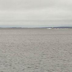 Loppuhileet kasoissa Siilinkarilla Teiskossa ja Lentävänniemessä #näsijärvi #seonaukiny